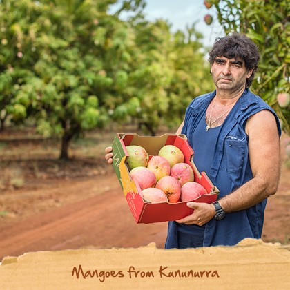 about spudshed - mangos from kununurra